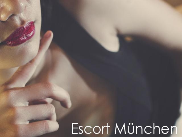 escort meine begleitung eis erotik