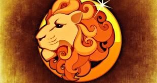 Mann Löwe erobern